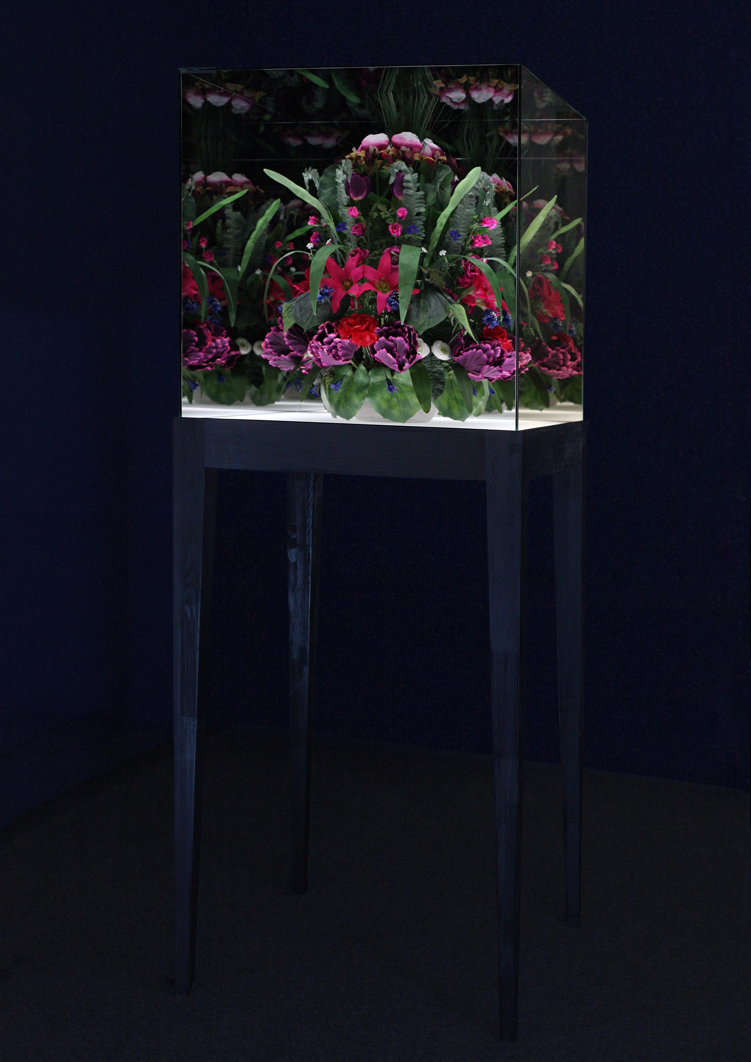 Doku-ALICE-Blumen-Hauptbild.jpg