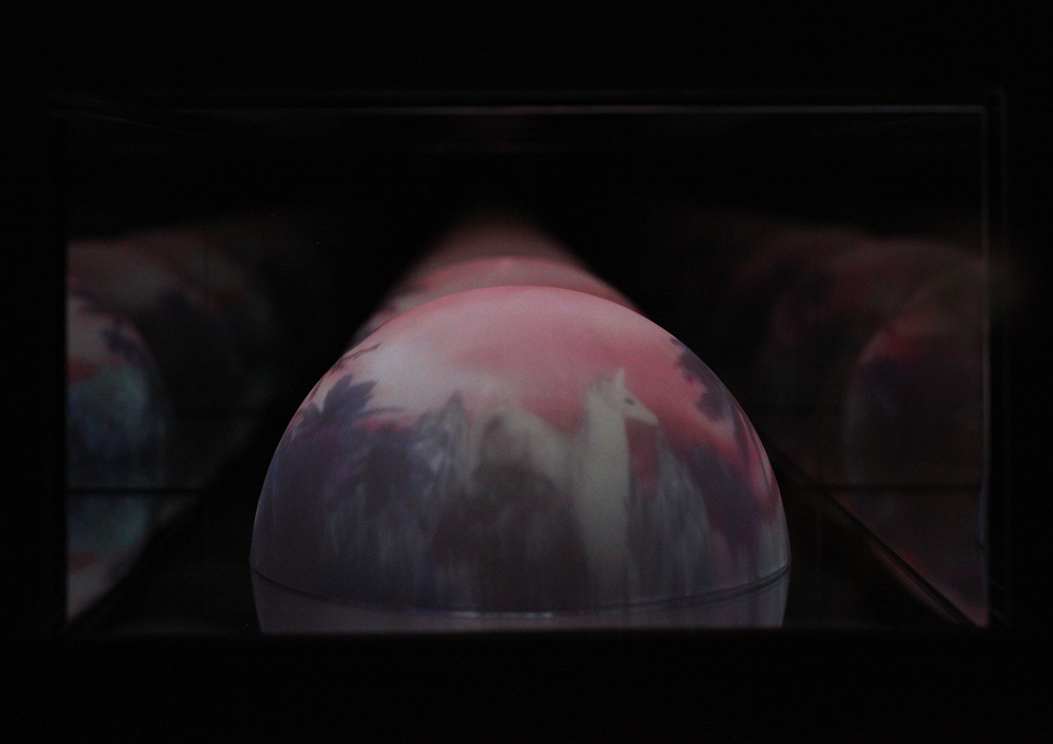 Doku-ALICE-Video-Close-up-1-quer-.jpg